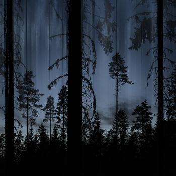 Teoksen nimi: Sininen Metsä / Blue Forest