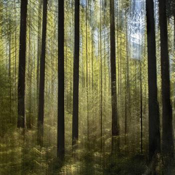Teoksen nimi: Vihreä Metsä / Green Forest