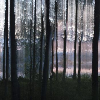 Teoksen nimi: Rantapuut II / Waterfront Trees II