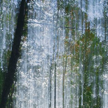 Teoksen nimi: Siniset lehdet I / Blue Leaves I
