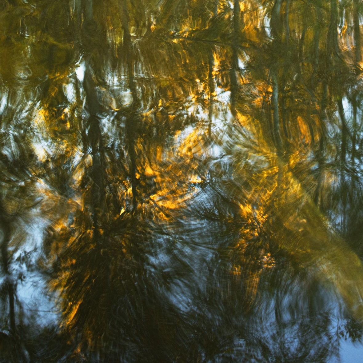 Järven peili / Lake´s Mirror