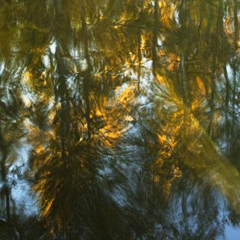 Teoksen nimi: Järven peili / Lake´s Mirror