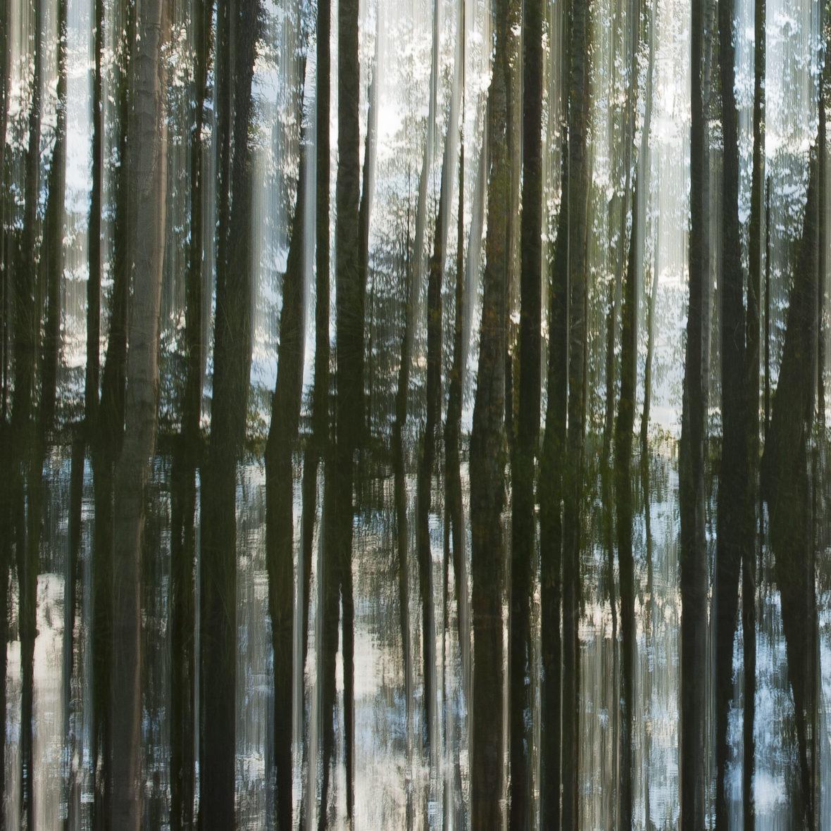 Kuvajainen / Reflection