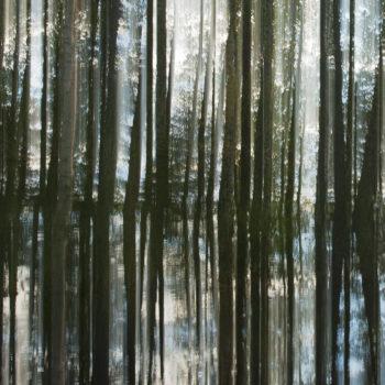 Teoksen nimi: Kuvajainen / Reflection