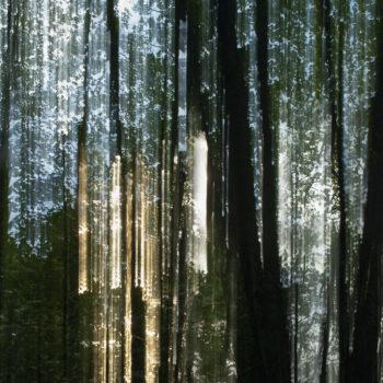 Teoksen nimi: Auringon säde / Beam of Light