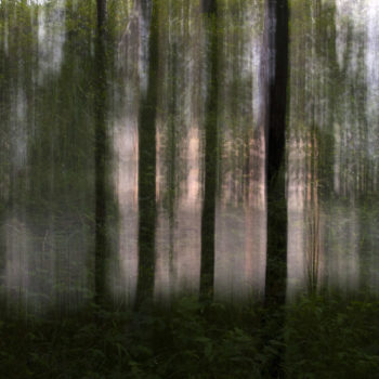 Teoksen nimi: Rantapuut / Waterfront Trees