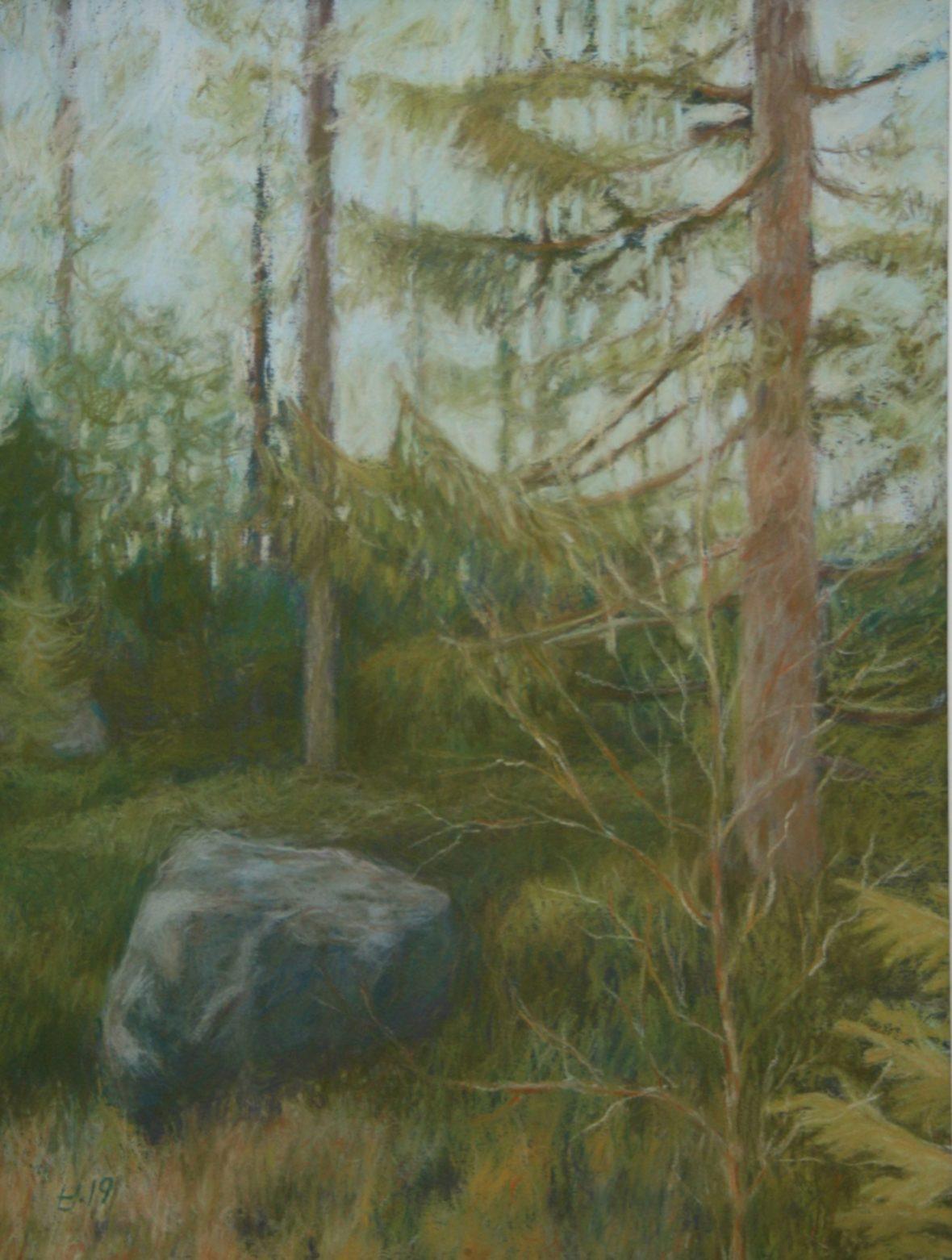 Metsässä III