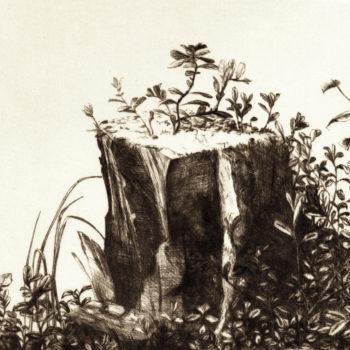 Name of the work: Kanto ja varpuja