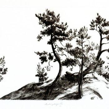 Name of the work: Archipelago VIII