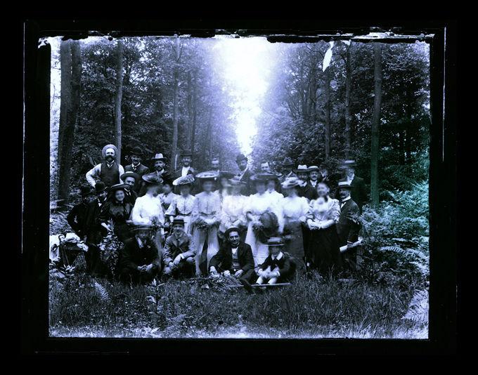 Crinolines in the Woods, 2011