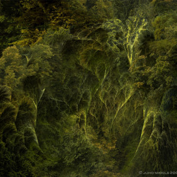 Name of the work: Fractal Nature