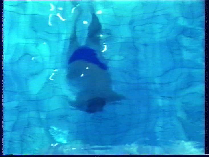 """""""Allasoperaatio"""" videoinstallaatio 1995"""