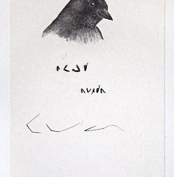 Teoksen nimi: Lintu lausuu runon, 2013