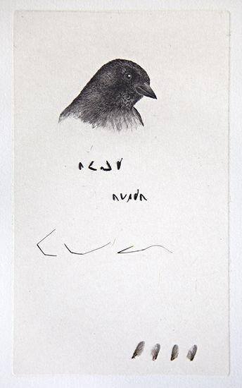 Lintu lausuu runon, 2013