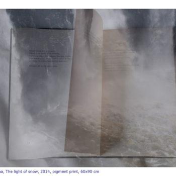 Teoksen nimi: Tulva, 2014