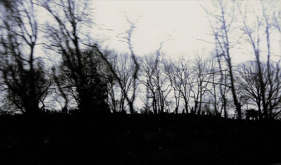N.Y. Easter Graveyard