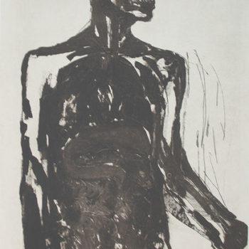 Teoksen nimi: anatominen piirustus
