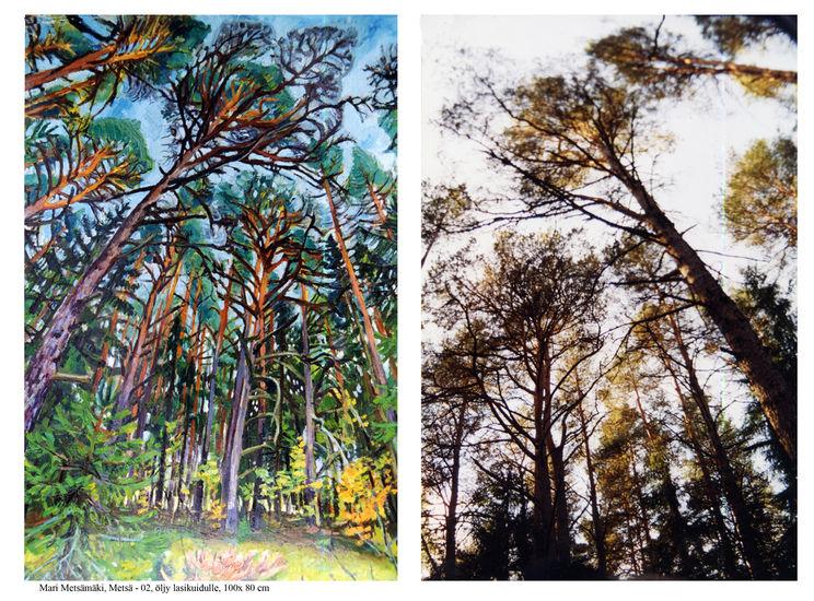 Metsän rakenne 2002