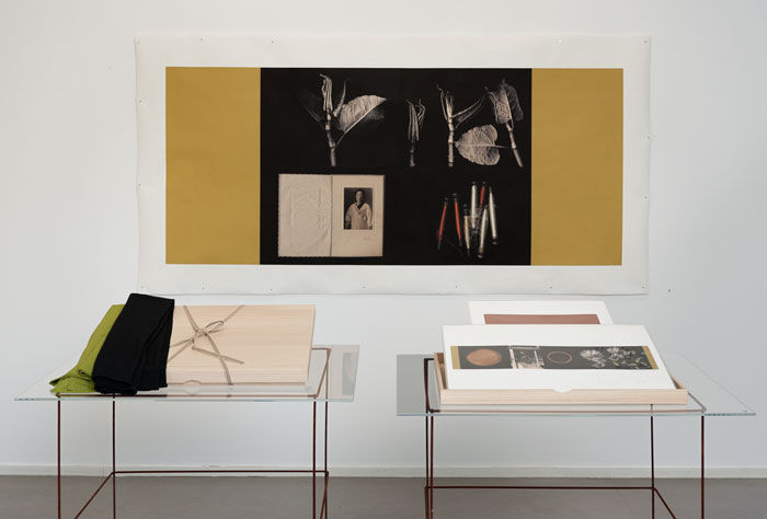 One space from the exhibition; Kiribako Boxes and inkjet prints from The serie Timely encounters
