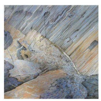 Teoksen nimi: Larus canus,2007