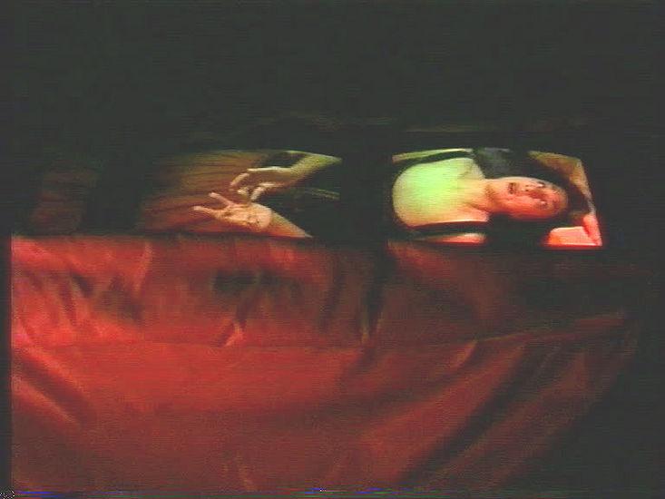"""Snow White"" videoinstallaatio 1995"