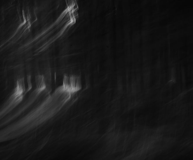 Sarjasta Wandering about wandering