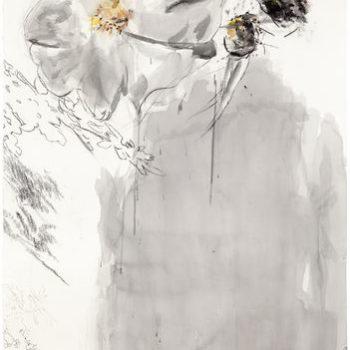 Teoksen nimi: Marian ruusu, 2011