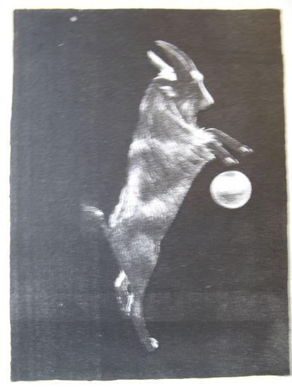 Oinas 1975
