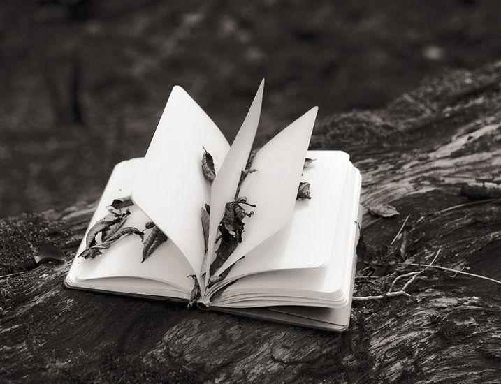 Kirja, the Book, 2009