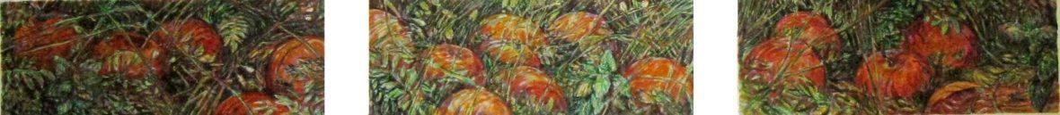 Pudonneita omenoita