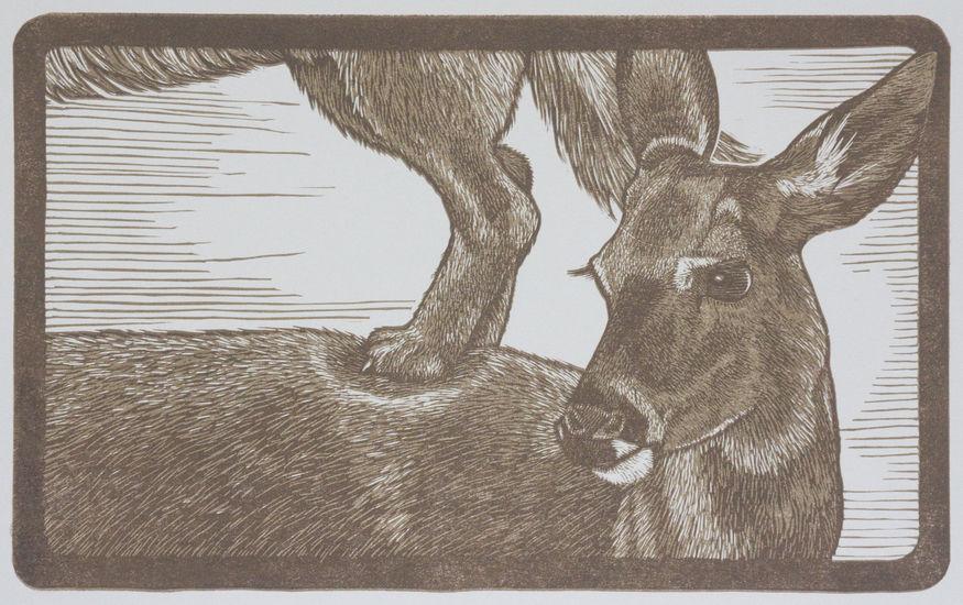 Animal Pyramid-Deer