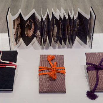 Name of the work: Artist books from serie After High Tide   2013