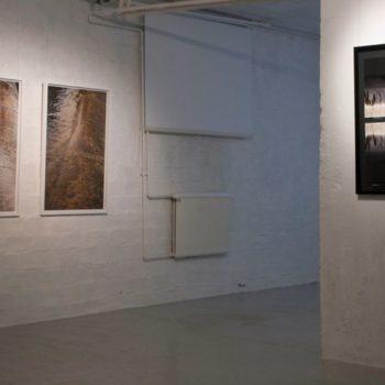 Teoksen nimi: Galleria Ronga 2011; August 1 ja 2, sekä Treasure