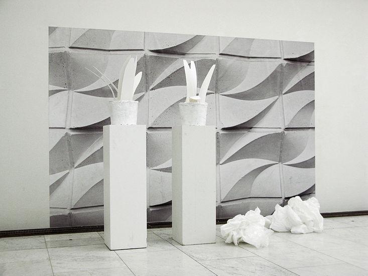 WHITE TRASH IN ORIENT EXPRESS mustesuihkutuloste, muovi (2009)