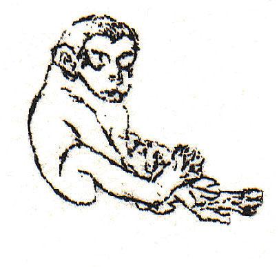 Apina-lapsi