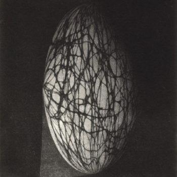 "Teoksen nimi: ""Space Net"", 2007"