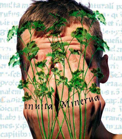 Invita Minerva – Minervan (inspiraatio) ollessa vastahakoinen