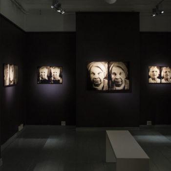 Teoksen nimi: Elämät näyttelystä 2014