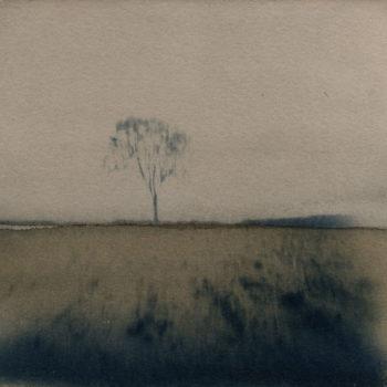 Teoksen nimi: Voisimme ainakin kiivetä puuhun. (Henry David Thoreau)