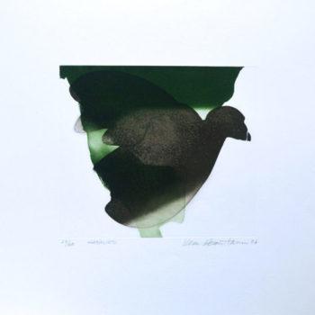Teoksen nimi: Kanalintu, 2006