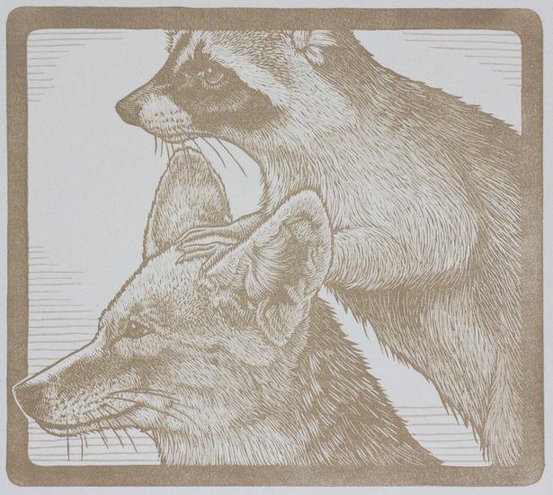 Animal Pyramid- Raccoon