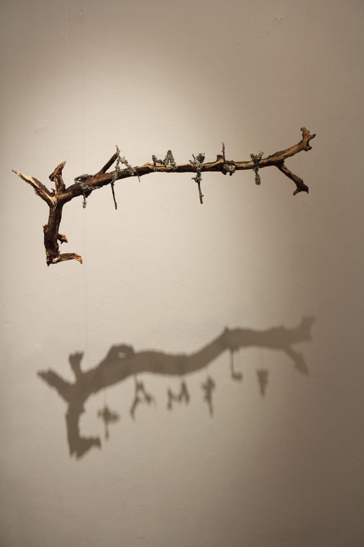 """FAMILY. """"Pakastin"""" näyttely"""