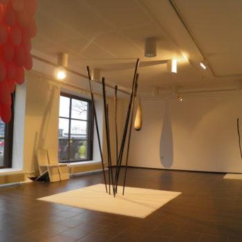 Teoksen nimi: yksityisnäyttely Tantrum, galleria Pirkko-Liisa Topelius, 2013