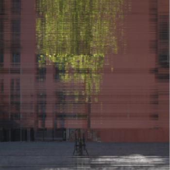 Teoksen nimi: Tree II