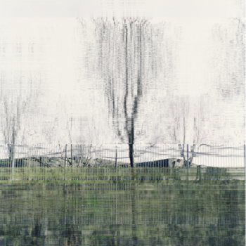 Teoksen nimi: 1.12.2009 (Tree)