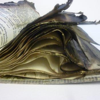 Teoksen nimi: Anteeksi sinulta lainaamani kirja paloi