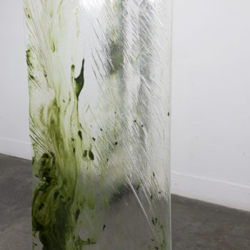 Teoksen nimi: Moldy Shower Curtain